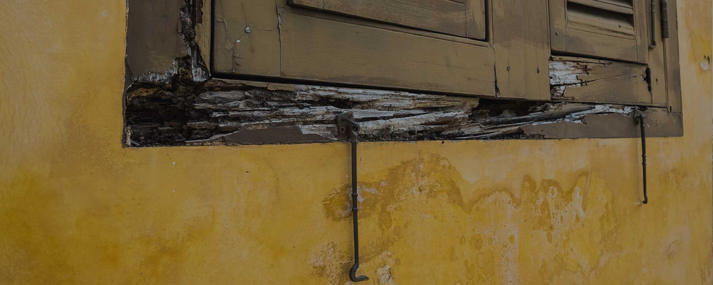 dry rot around a wooden window frame