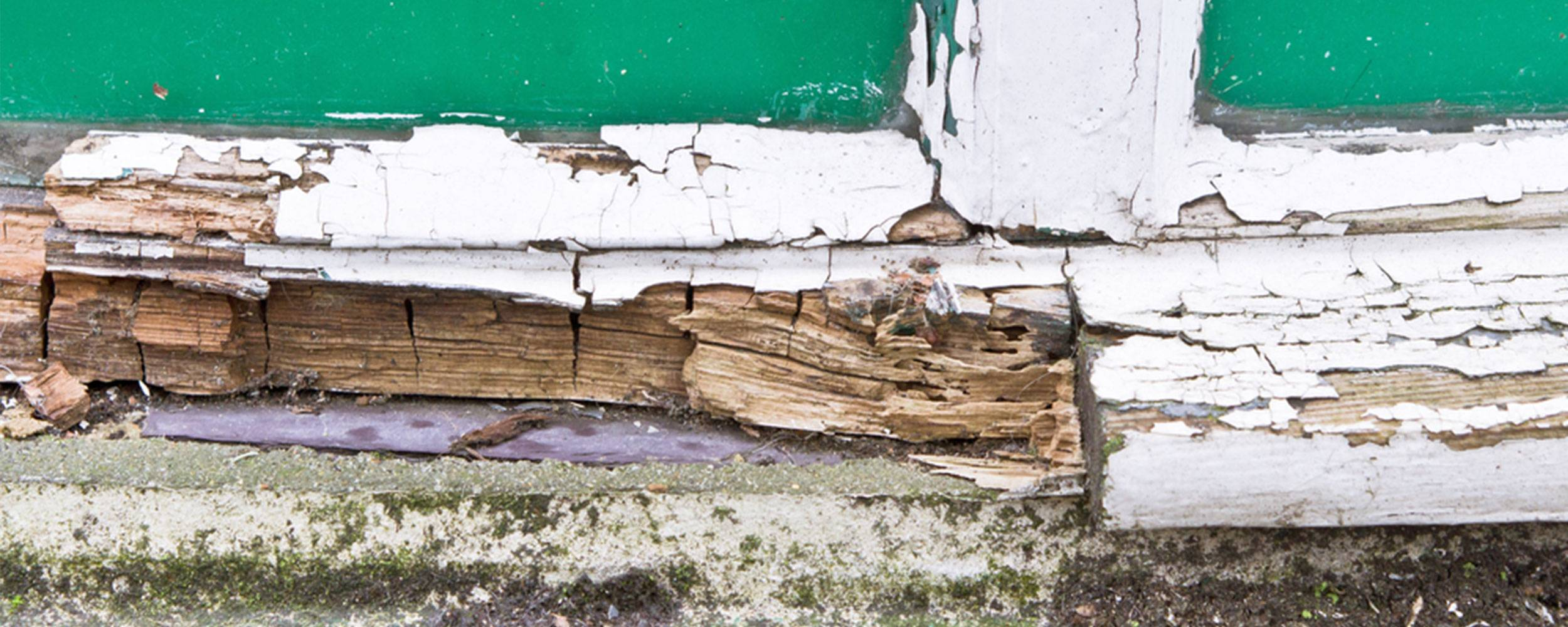 dry rot in wood under an old door