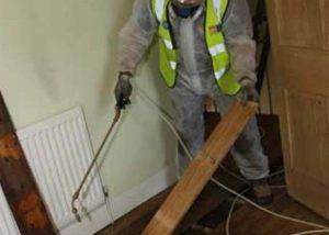 man-performing-timber-treatment